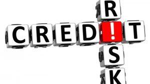 Consumer Credit Risk Characteristics